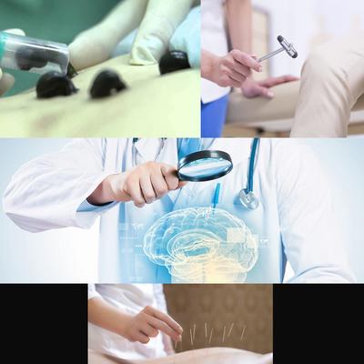 Иглотерапия,  пиявки,  невпапотолог - main